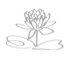 Lotus Logo Black Grayshadow Flower Only Image